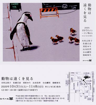 動物は〜おもて.jpg